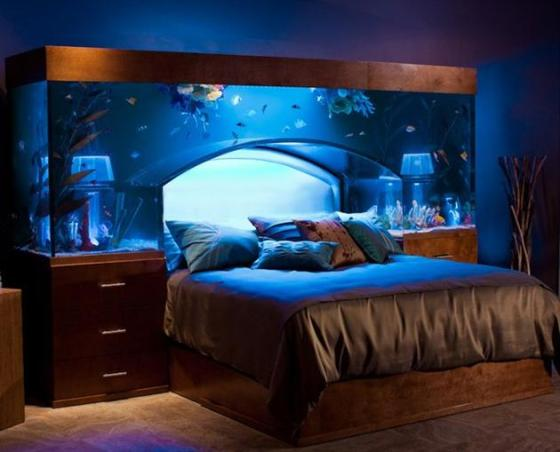 650-Gallon-Aquarium-Bed